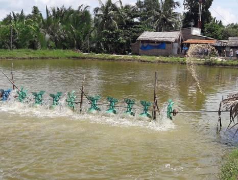Naba Fisheries ltd.